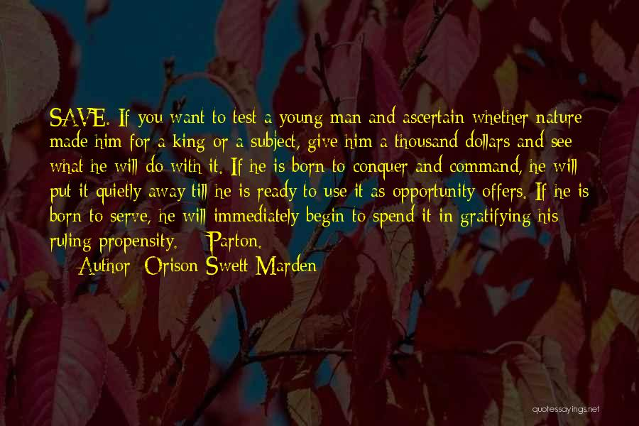 Born To Serve Quotes By Orison Swett Marden