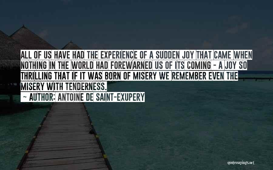 Born With Nothing Quotes By Antoine De Saint-Exupery