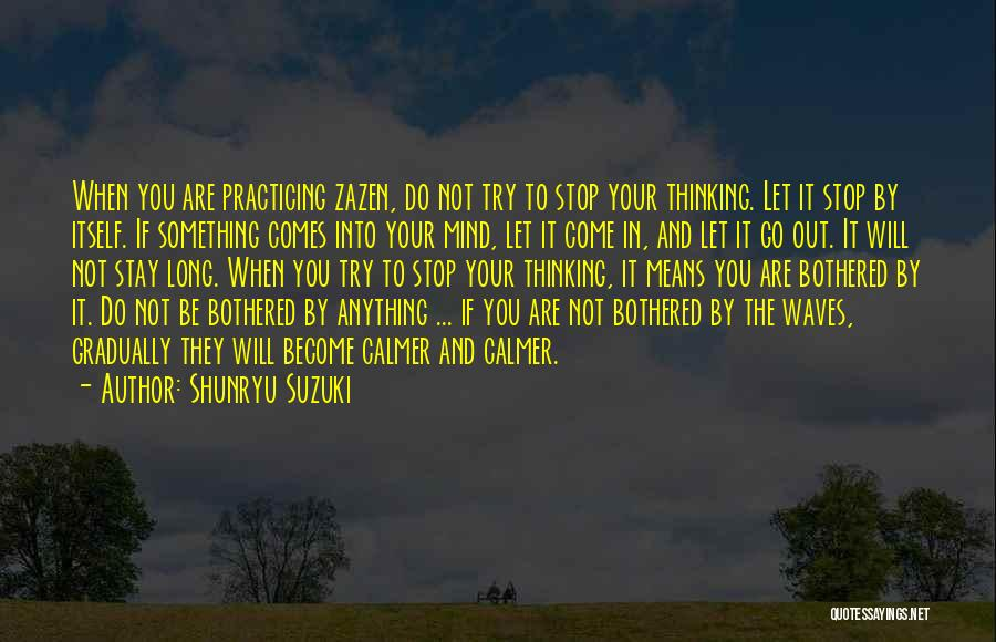 Bothered Mind Quotes By Shunryu Suzuki