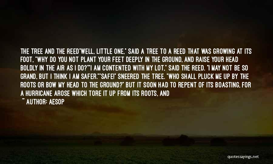 Bow My Head Quotes By Aesop