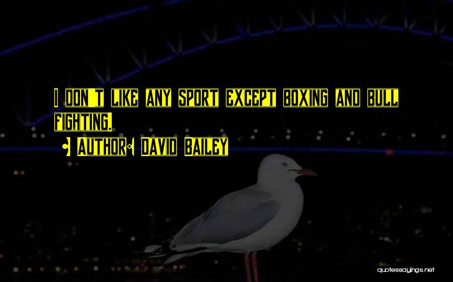 Boxing Fighting Quotes By David Bailey