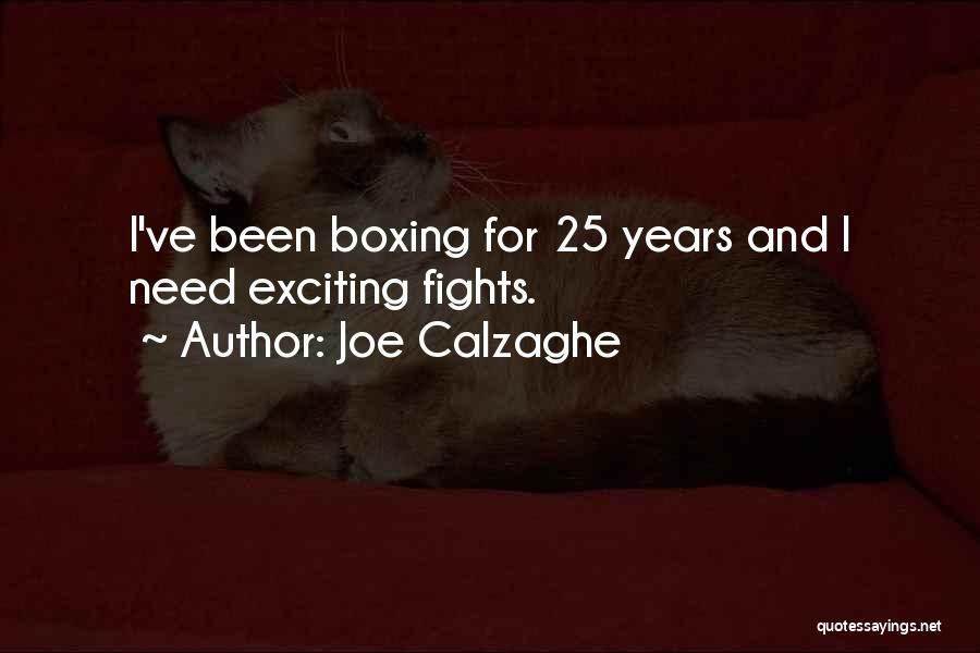 Boxing Fighting Quotes By Joe Calzaghe