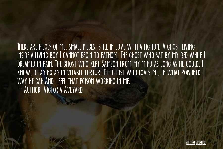 Boy Love Quotes By Victoria Aveyard