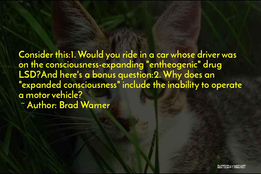 Br Quotes By Brad Warner