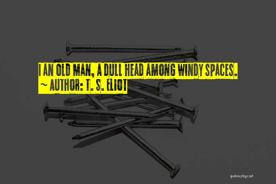 Br Quotes By T. S. Eliot