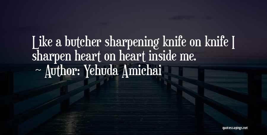 Br Quotes By Yehuda Amichai