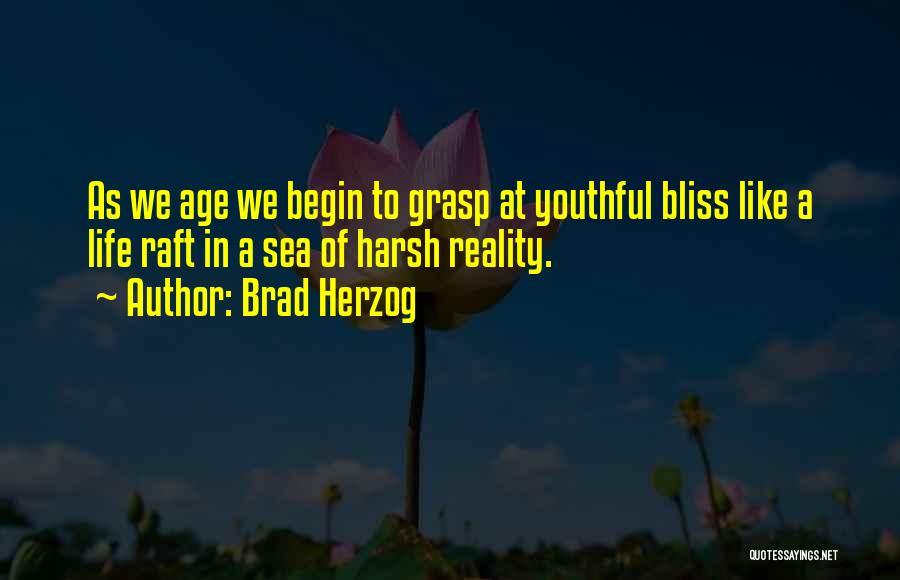 Brad Herzog Quotes 2244171