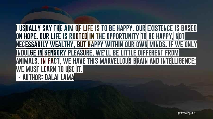Brain Intelligence Quotes By Dalai Lama