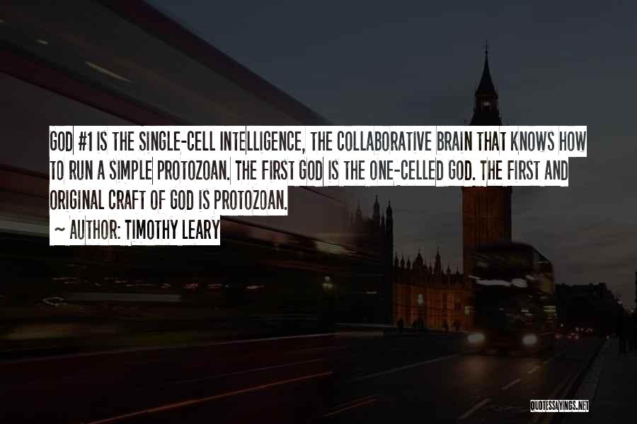 Brain Intelligence Quotes By Timothy Leary