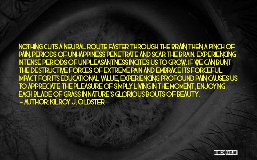 Brain Without Beauty Quotes By Kilroy J. Oldster