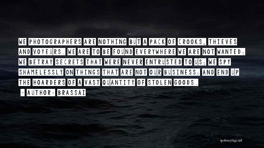 Brassai Quotes 1229716