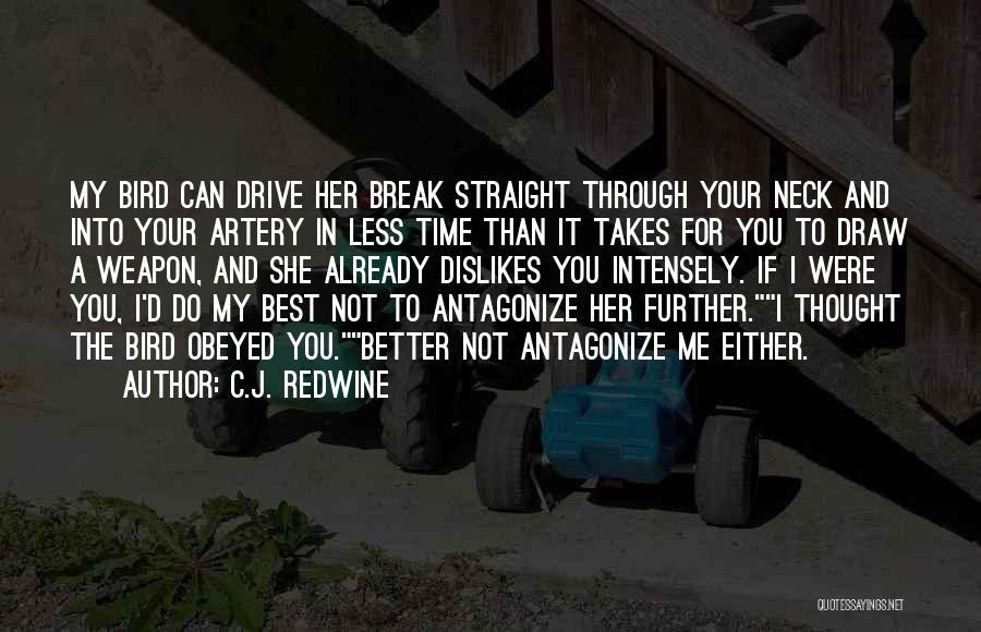 Break Neck Quotes By C.J. Redwine