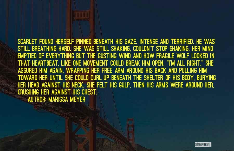 Break Neck Quotes By Marissa Meyer