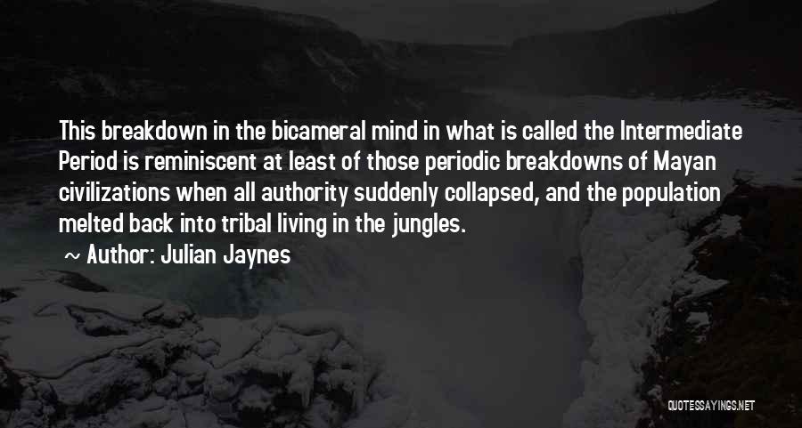 Breakdowns Quotes By Julian Jaynes