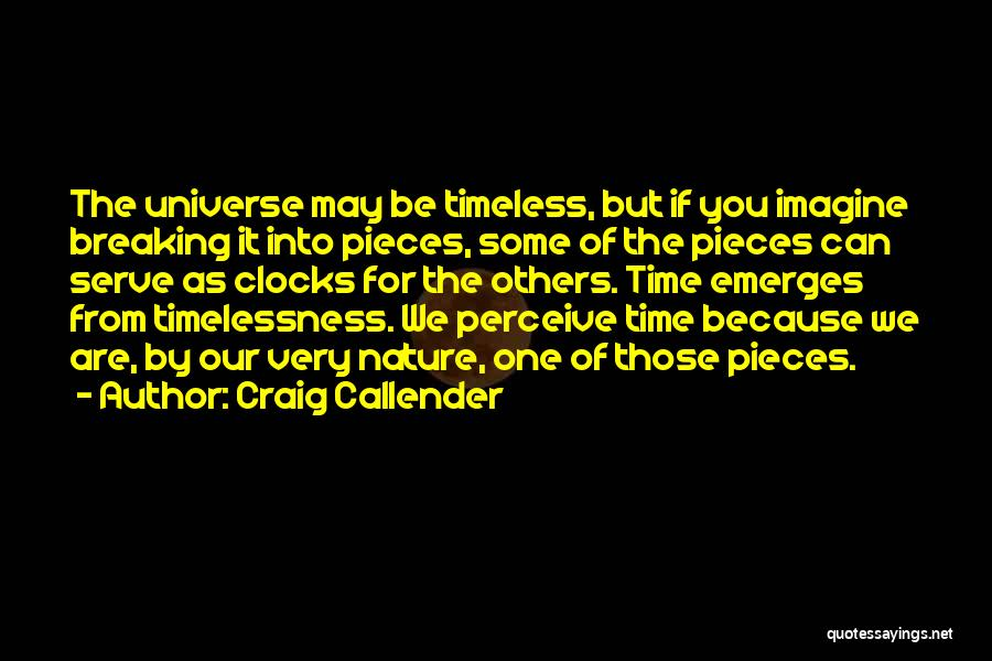 Breaking Into Pieces Quotes By Craig Callender