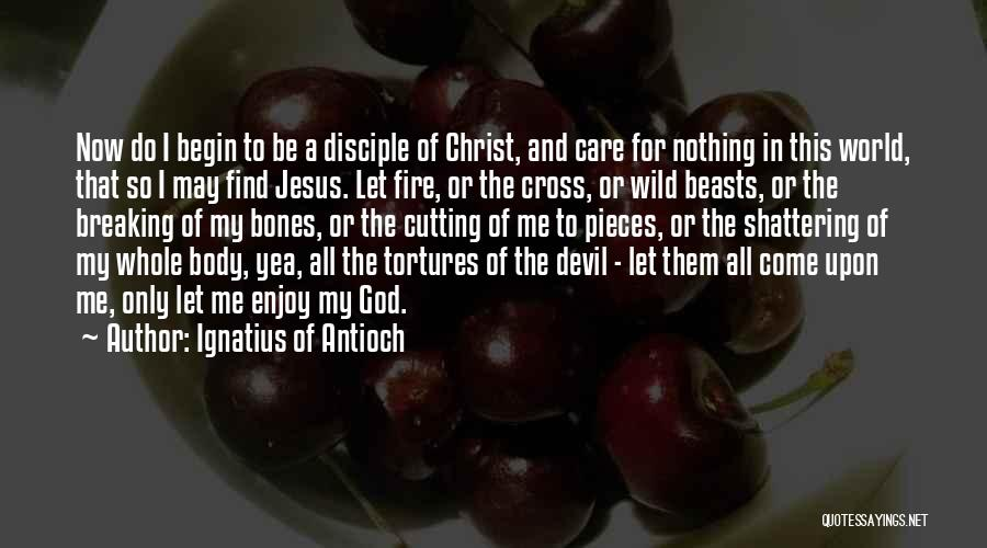 Breaking Into Pieces Quotes By Ignatius Of Antioch