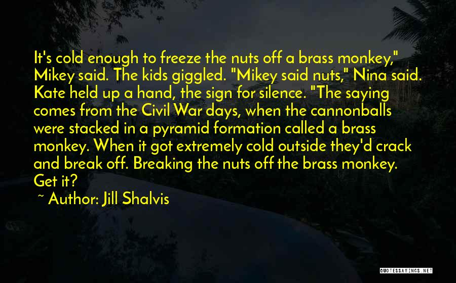 Breaking My Silence Quotes By Jill Shalvis
