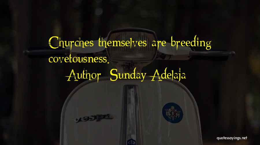 Breeding Quotes By Sunday Adelaja