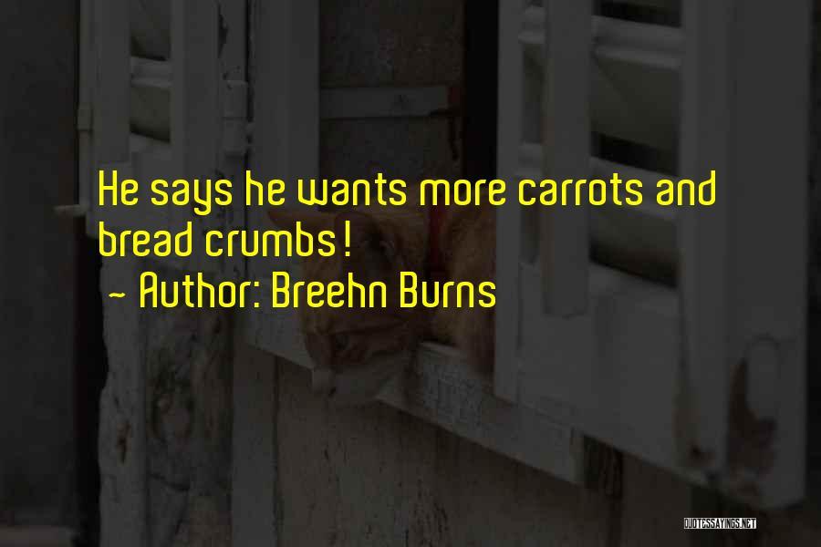 Breehn Burns Quotes 1549963