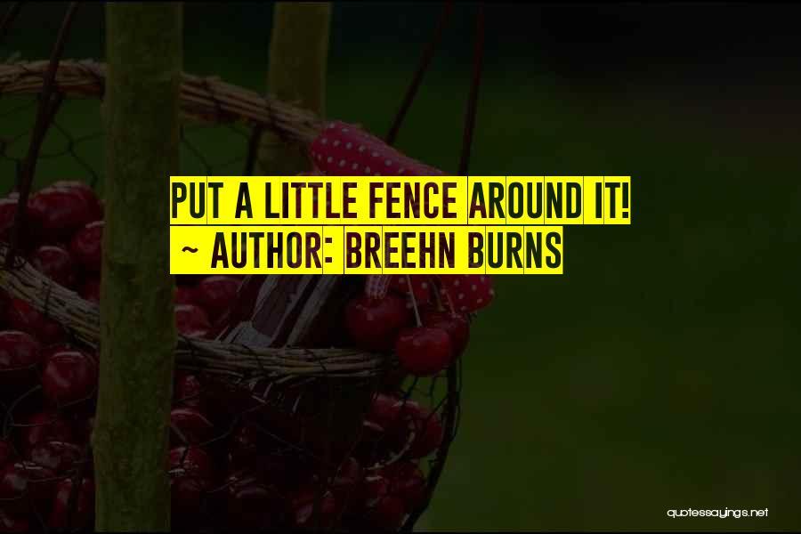 Breehn Burns Quotes 2049307