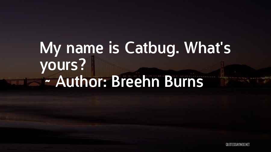 Breehn Burns Quotes 2049670