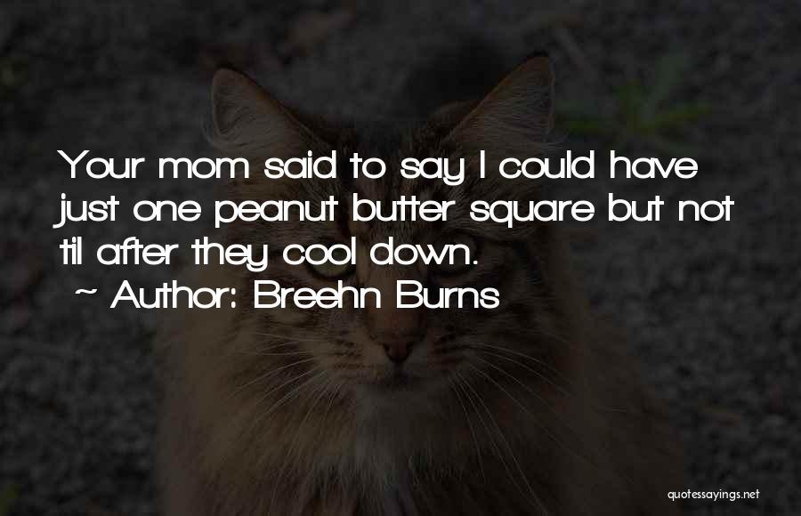 Breehn Burns Quotes 444260