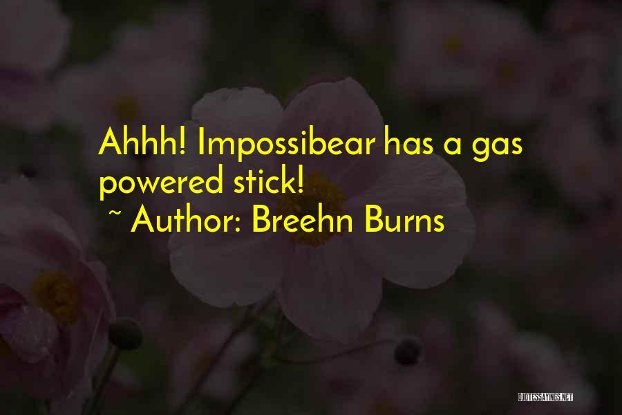 Breehn Burns Quotes 629993