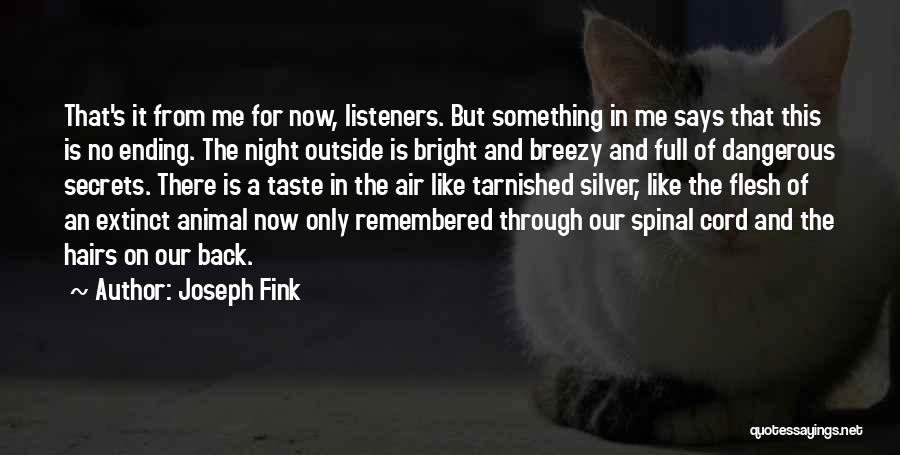 Breezy Quotes By Joseph Fink