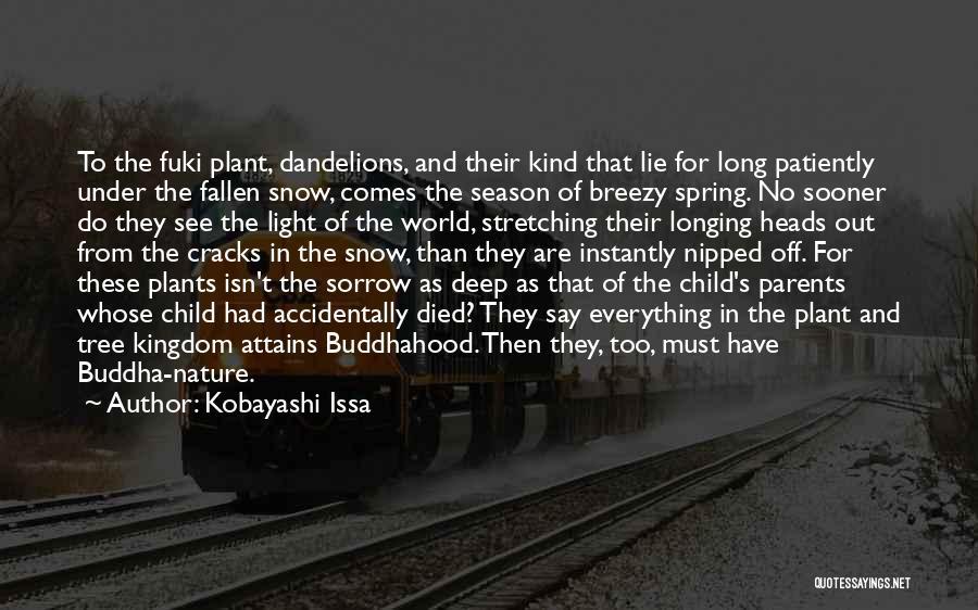 Breezy Quotes By Kobayashi Issa