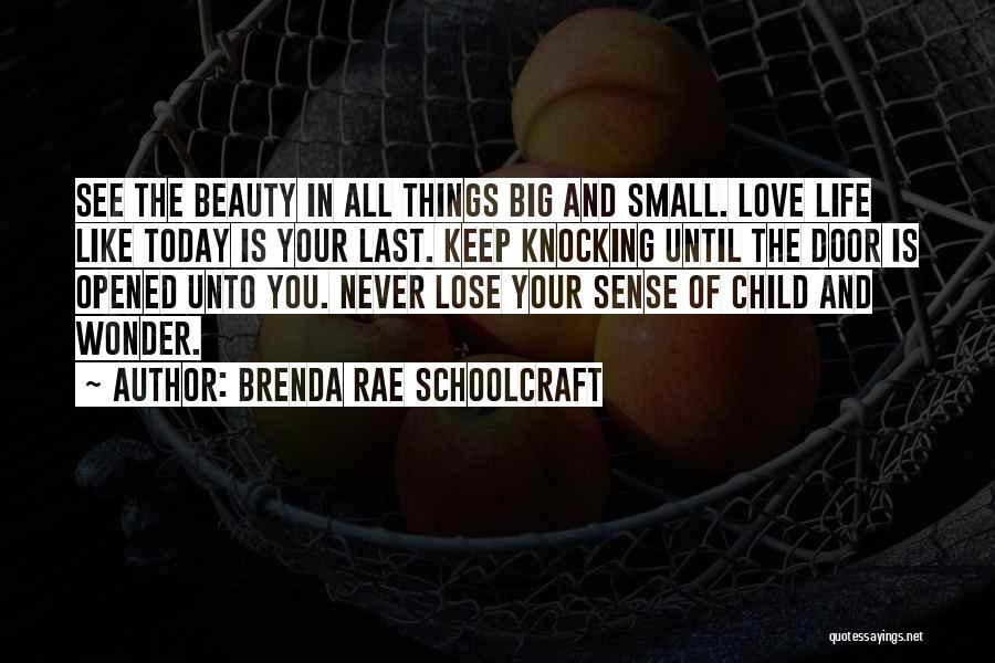 Brenda Rae Schoolcraft Quotes 1092523