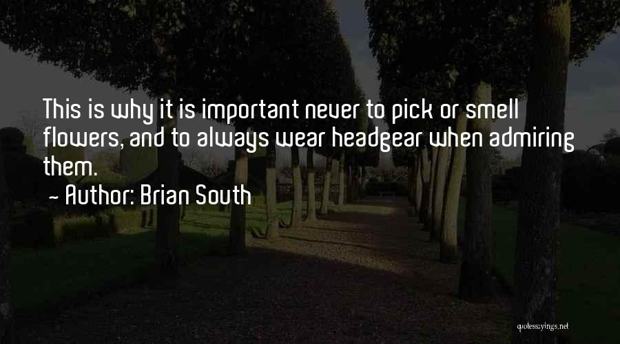 Brian South Quotes 1227540