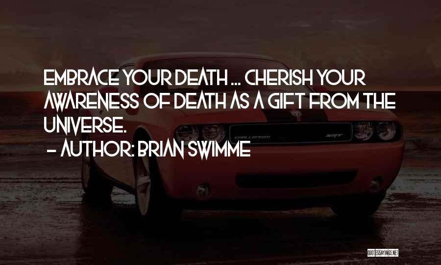 Brian Swimme Quotes 133500