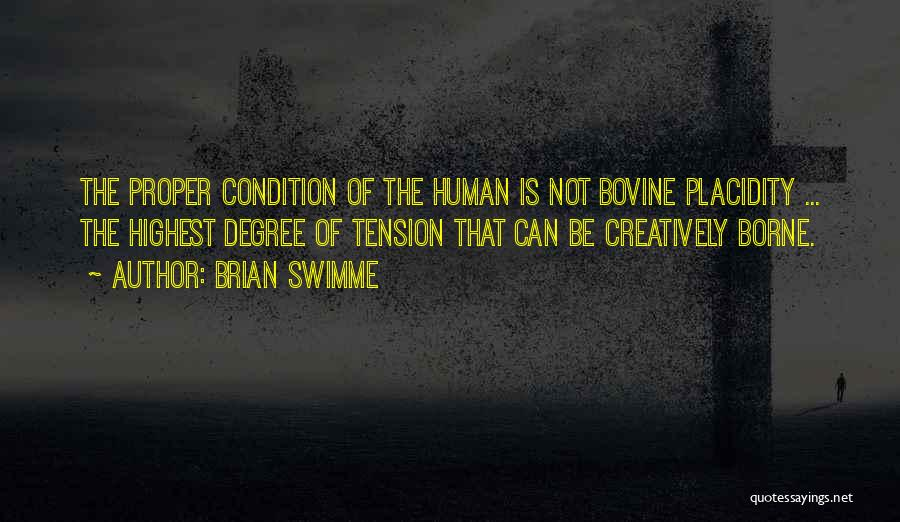 Brian Swimme Quotes 610883