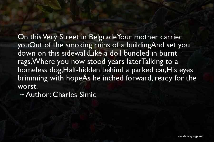 Brimming Quotes By Charles Simic