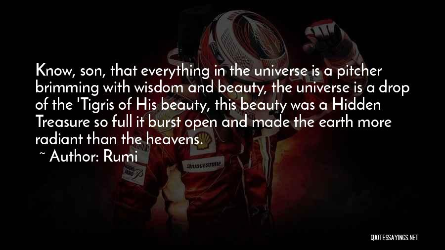 Brimming Quotes By Rumi