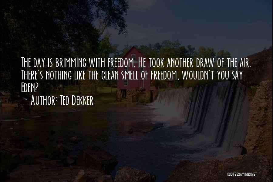 Brimming Quotes By Ted Dekker