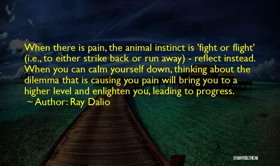 Bring Yourself Down Quotes By Ray Dalio