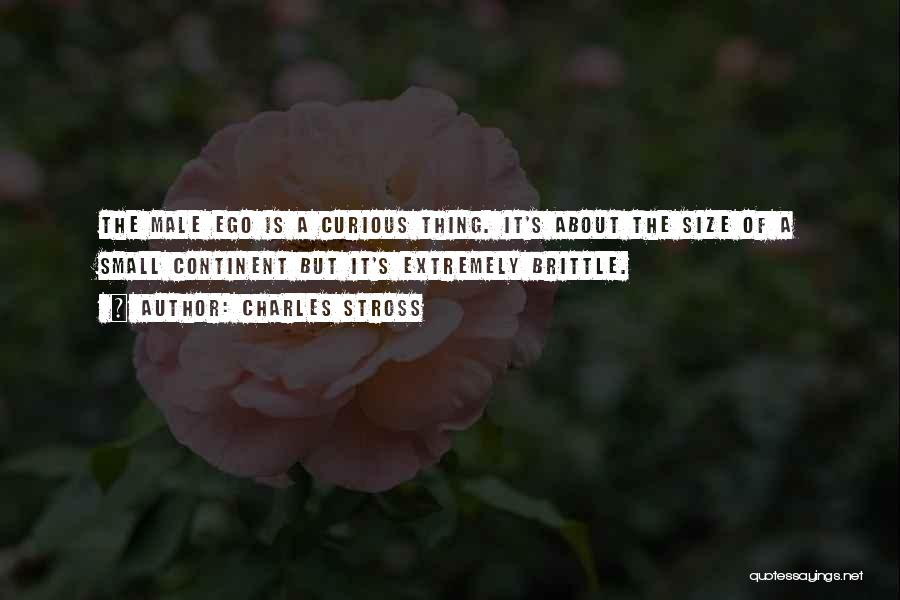 Brittle Quotes By Charles Stross