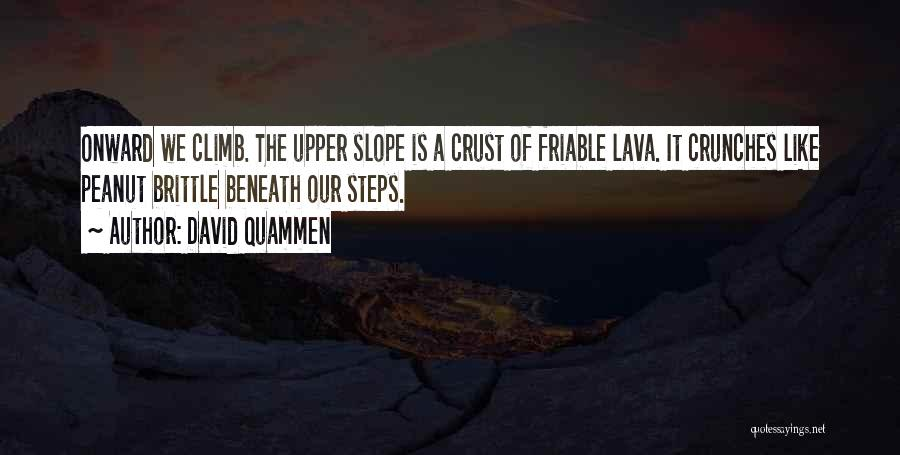 Brittle Quotes By David Quammen