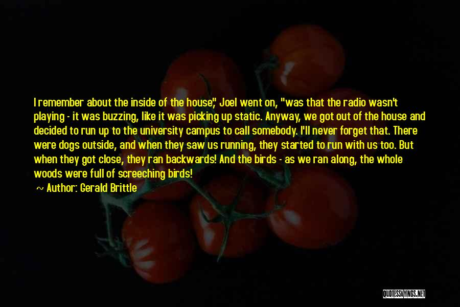 Brittle Quotes By Gerald Brittle