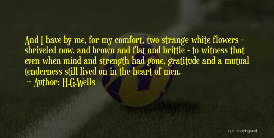 Brittle Quotes By H.G.Wells