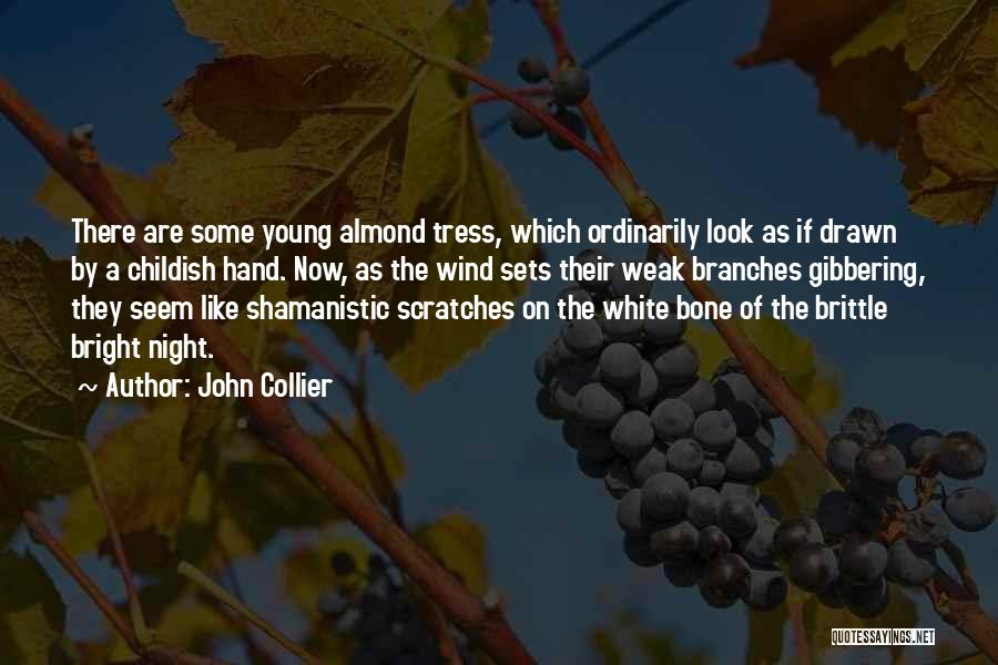 Brittle Quotes By John Collier