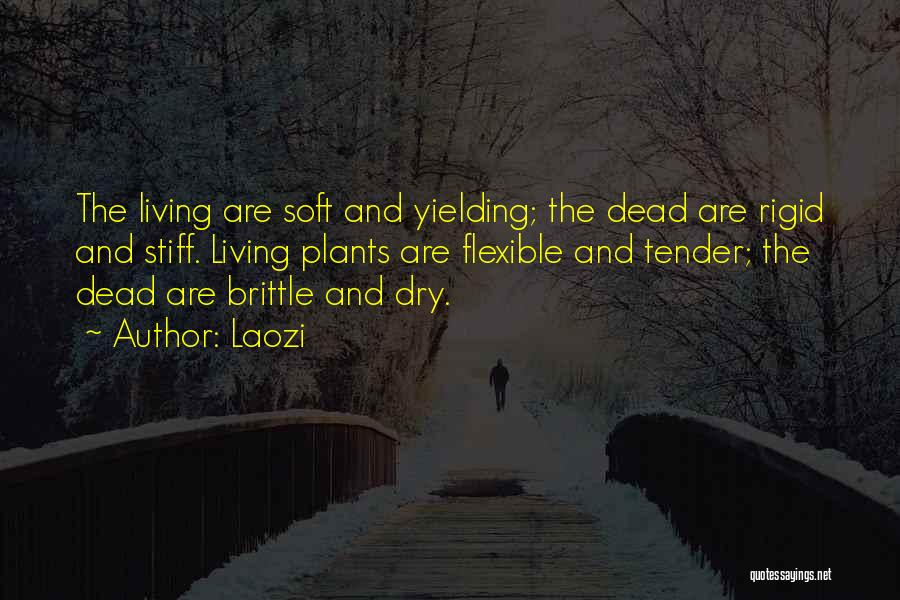 Brittle Quotes By Laozi