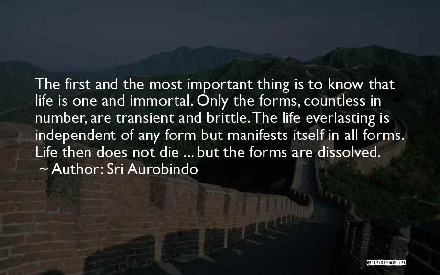Brittle Quotes By Sri Aurobindo