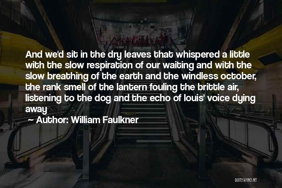 Brittle Quotes By William Faulkner