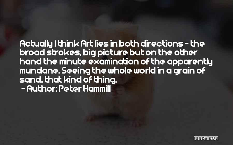 Broad Strokes Quotes By Peter Hammill