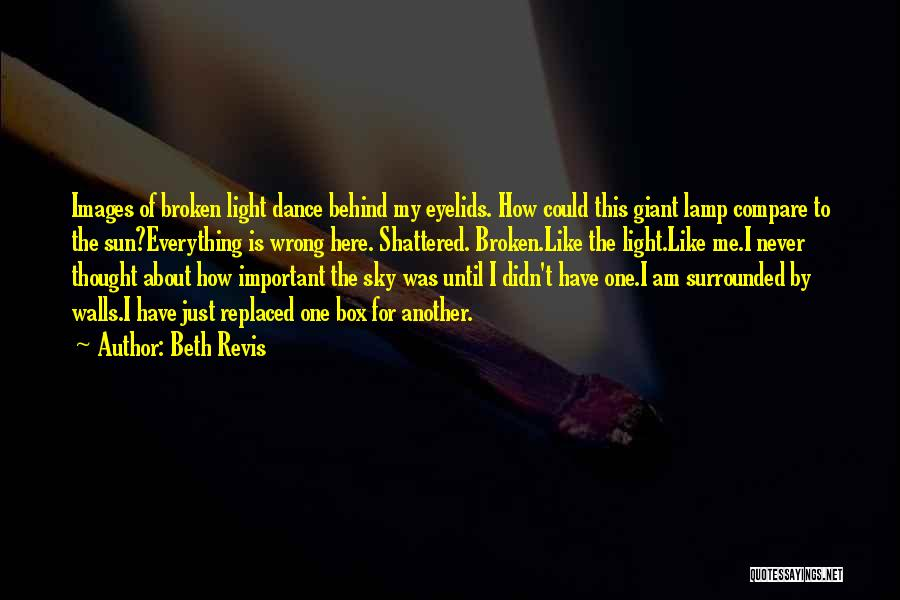 Broken But Never Shattered Quotes By Beth Revis
