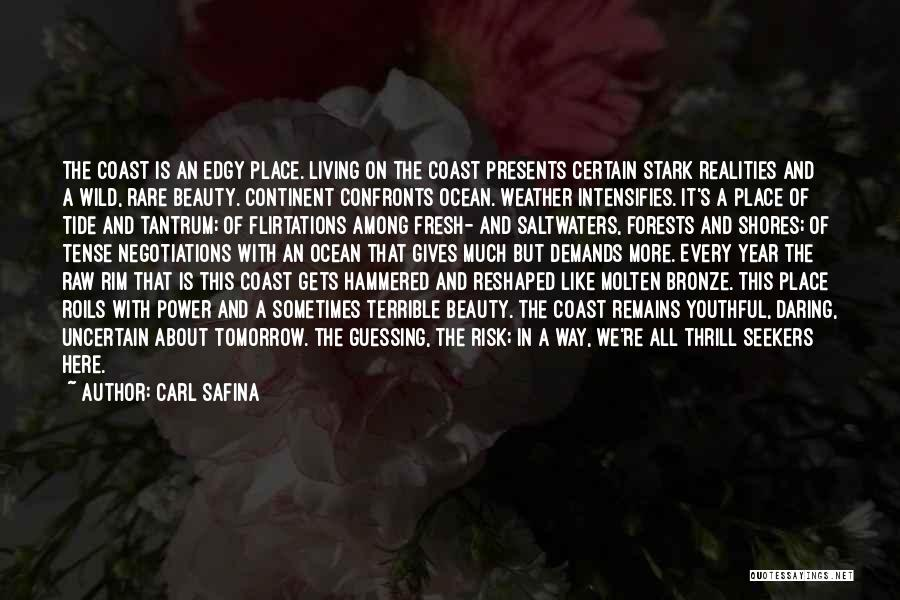Bronze Quotes By Carl Safina