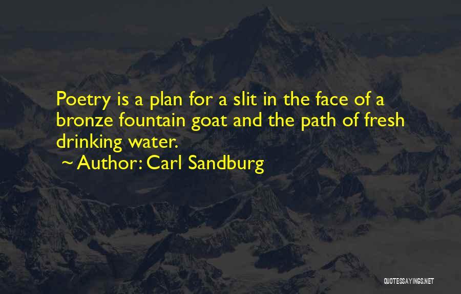 Bronze Quotes By Carl Sandburg