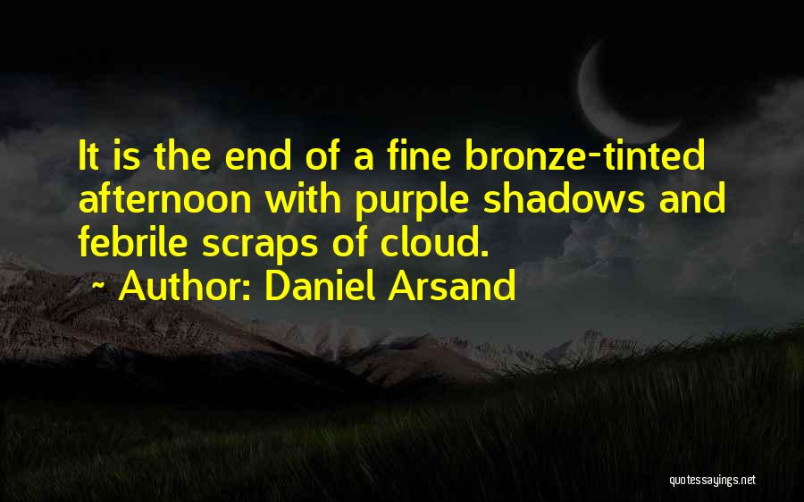 Bronze Quotes By Daniel Arsand